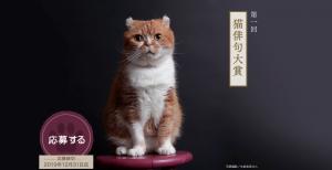 第1回「猫俳句大賞」投句募集開始